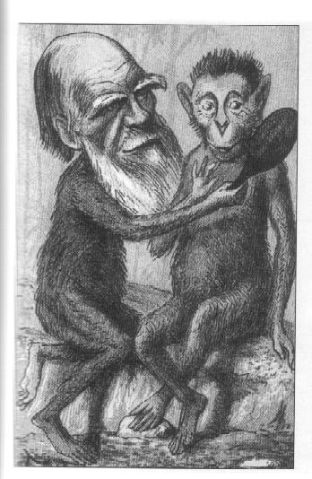 Cartoon of Darwin and Ape