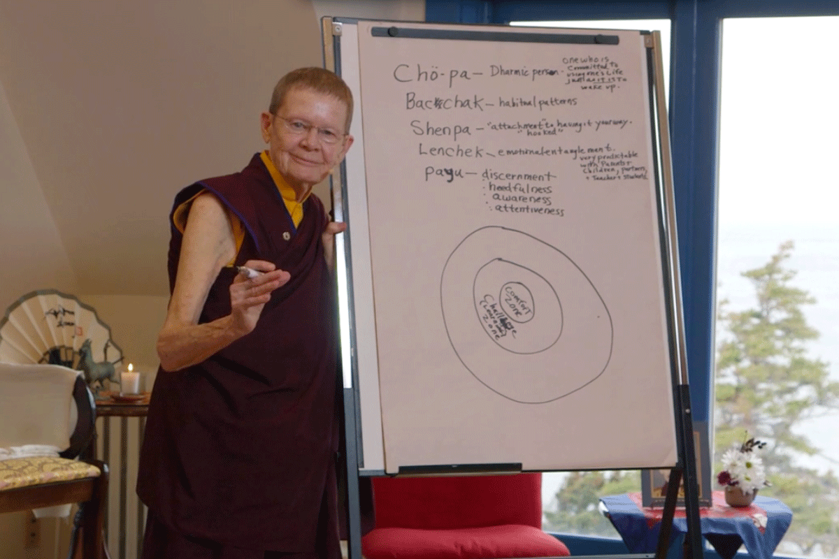 Pema-Blog-Post